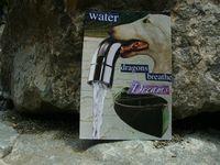 Water Dragon's Breathe Dreams